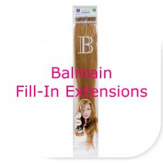 Fill-In Extensions